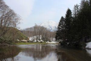 尻別川流域の春